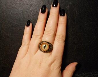 Green Alligator Eye Taxidermy Glass Eye Ring