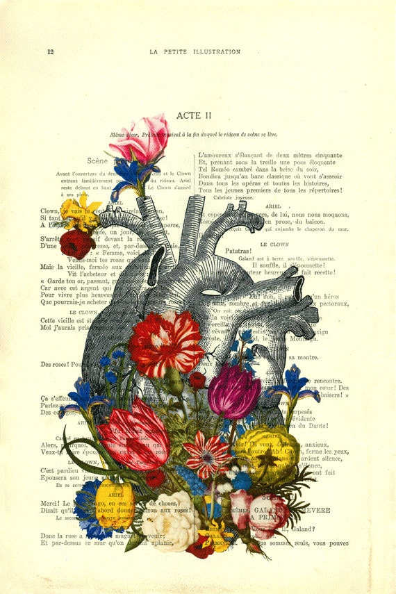 Heart Flowers Heart Art Print Floral Anatomical By