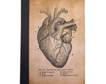 Vintage Medical Illustration Heart Folio Case For The iPad Mini