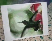Blank Hummingbird blank Note Card