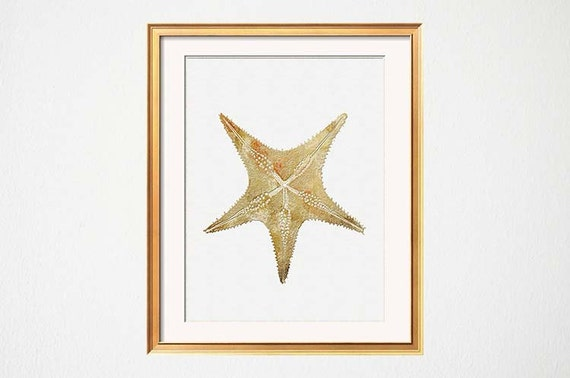 Gold Starfish Wall Decor : Stafish art gold starfish nautical wall decor