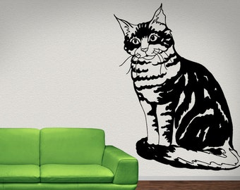 Main Coon Cat Animal   Vinyl Wall Art Graphic Decal