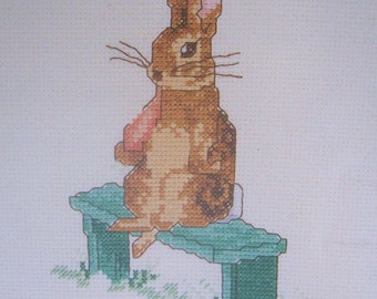 beatrix potter fierce bad rabbit  cross stitch CHART INSTRUCTIONS ONLY lakeland artist new