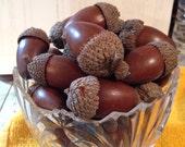 Huge large nature made acorns