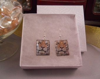 Tiger earrings, full color on square shell with silver plated wires