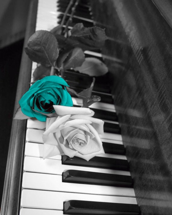 Black And White Photography Roses on Pianos Black White Teal Rose Flowers