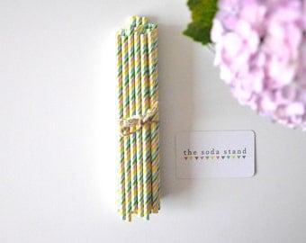 Rainbow • multicolour striped paper straws