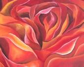 Art, Original Painting, Oil Painting, Contemporary painting, Abstract Painting, Red Orange Painting, Title:  FLAME FLOWER by Nicky Spaulding