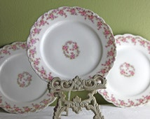 Elite Limoges Plate.  9 Inch Plate with Tiny Pink Roses. Luxurious Porcelain Dishes. Made in France. Marked.