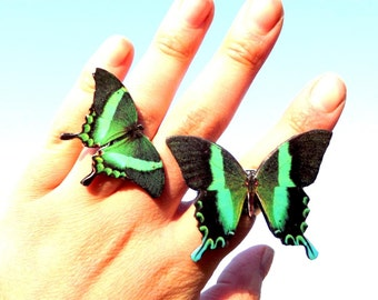 SALE - Buy two butterfly ring cheaper, Green Swallowtail butterfly ring, Butterfly ring, Butterfly jewelry, Wing jewelry, Wing ring.