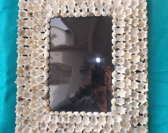 Great Shell Embellished Photo Frame