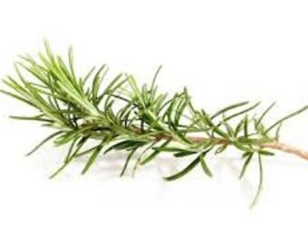 Dried Rosemary,
