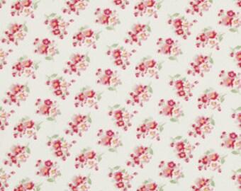 SALE - Tanya Whelan Rosey, Cherry Blossom in Ivory, 1/2 yard Freespirit PWTW065