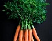 Carrots Food Photography, Photo Print, Large Wall Art, Kitchen Decor, Dining Room Decor, Home Decor, Restaurant Decor, Vegetable Photograph