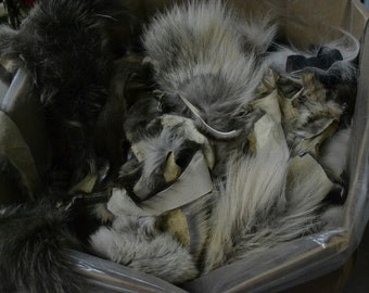 Fur Scrap 1 pound SMALL Fox Scrap Skins Coyote Raccoon craft - 10931