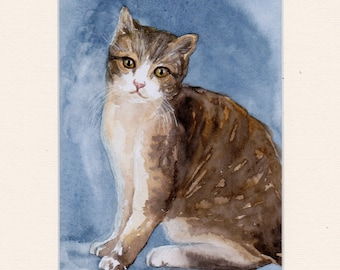 Cat,  lovely, brown-white cat, original watercolor painting, handpainted, 7,8 x 11,8 inch incl.passepartout. NOT a print. nature