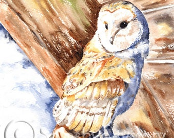 BARN OWL Art Print Of Original Watercolour Painting from Scottish Artist.