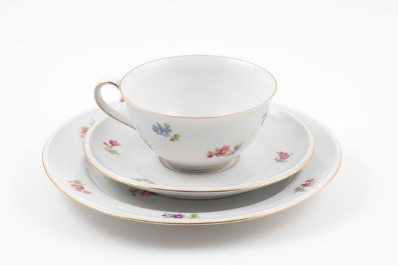 2 available hutschenreuther arzberg bone china teacup saucer. Black Bedroom Furniture Sets. Home Design Ideas