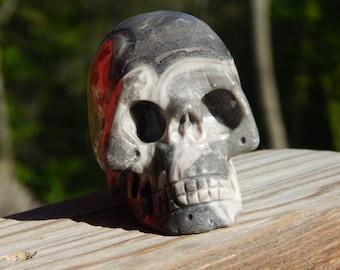 3 inch Fossil Jasper Crystal Skull