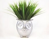Cute Owl Planter / Mini Owl Desk Planter / Office Desk Accessories / Silver Owl