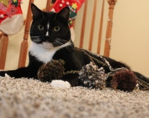 Natural Cat Toy Collection