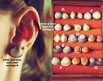 White and Lilac Clam Shell Earrings
