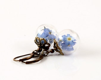True forget-me-not flowers earrings E055
