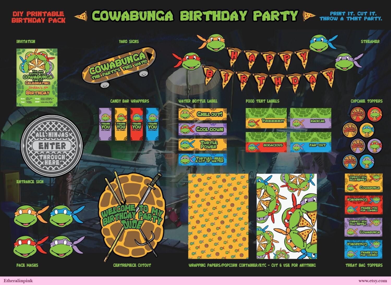 Excellent Teenage Mutant Ninja Turtles Birthday Party Invitations ...