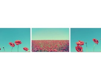 Set of 3 Poppy flower photographs, fine art photo print collection, poppies, flowers, nature