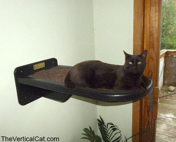 Cat perch from the vertical cat - Wall mounted cat climber ...