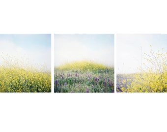 Wildflower Prints - Set of 3 - Gallery Wall, Floral Prints, Boho Prints, Nature Photography