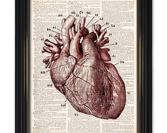 The Heart dictionary art print- Medical Anatomy Heart Diagram Print. Printed on upcycled vintage dictionary paper - 8x10 inch