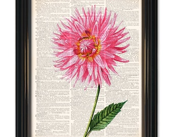 Flower dictionary art print. Botanical art on upcycled dictionary book page-8x10 inch. Buy any 3 get 1 Free or Buy 4 get 2 FREE!