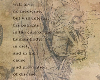 The Doctor of the Future Chiropractic Anatomy Artwork