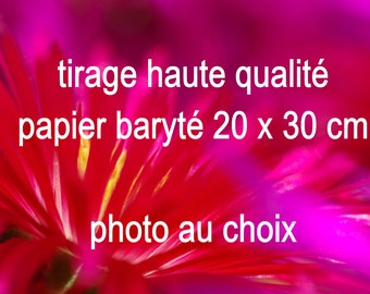 Printing paper baryte_photo to choose from boutique_photographie nature_macrophotographie_france_provence_corse_mer