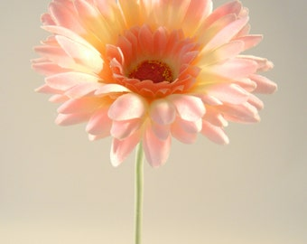 "Gerbera Daisy in Pink - 24"" Tall"