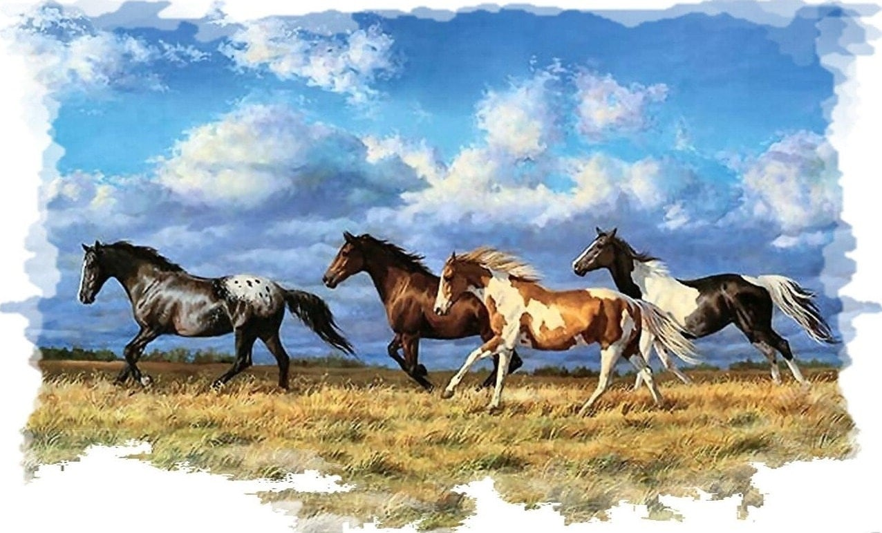Horse Stallion Mustang 2 Rv Trailer Wall Mural Decal Decals
