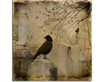 Ravens Art, Wildlife, Distressed, Aged Art Image Print, Blackbirds, Antique Colors, Gothic Birds, Vintage Style - Faded light