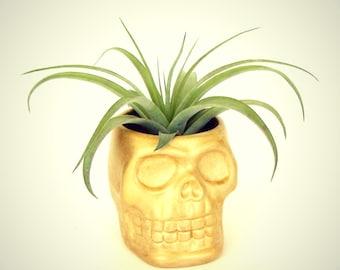 Sugar Skull Planter Silver Gold Ceramic tea light Holder Day of the Dead Folk Art Dia de los Muertos decor