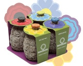 Seedbom 4 Pack - Wildflower Selection