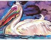 White Pelican Watercolor Painting Print, Artist-Signed