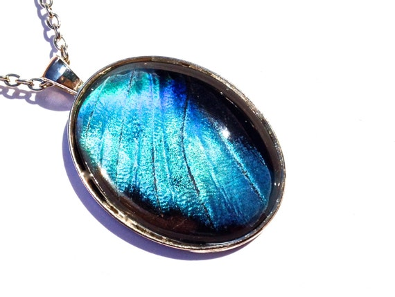 Blue Butterfly Jewelry: Real Butterfly Wing Pendant, Breaking Bad Blue Crystal