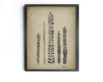 "Rustic Ferns Archival Art Print - Ferns 8""x10"", 5""x7"", 9""x12"" or 11""x14"" - Modern Wall Decor - Vintage Inspired Art"