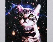 Silly Space Kitten Postcard