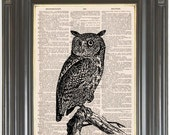 Owl print on dictionary or music page COUPON SALE Dictionary art print Wall decor Sheet music print Digital print Bird of Prey Item No. 721
