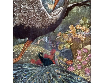 Crane and Peacock Card - Big Book of Fables - Repro Charles Robinson