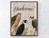 Wall art print Hawksome Funny altered art.HIMYM fan gift dictionary art llustration Giclee print geek gift print ANI196
