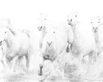 Ghost Horses Run II - Fine Art Horse Photograph - Horse - Camargue - Black and White - Fine Art Print