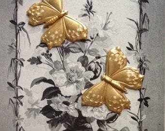 Etched Butterfly (2 pc)