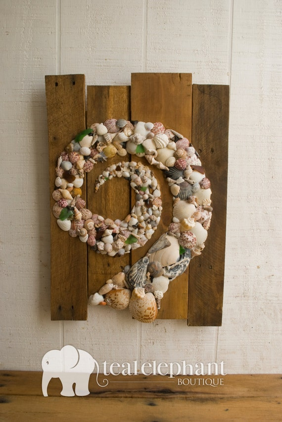 Items Similar To Sale Pallet Art Natural Shell Spiral